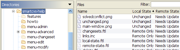 Remote State with remote-only files and directories